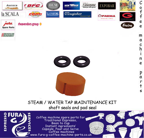 STEAM / WATER  TAP MAINTENANCE KIT