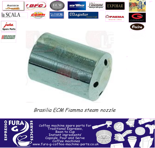 Brasilia Steam Wand Tip
